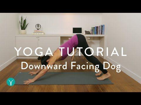 downward facing dog — how to do a downward dog in yoga