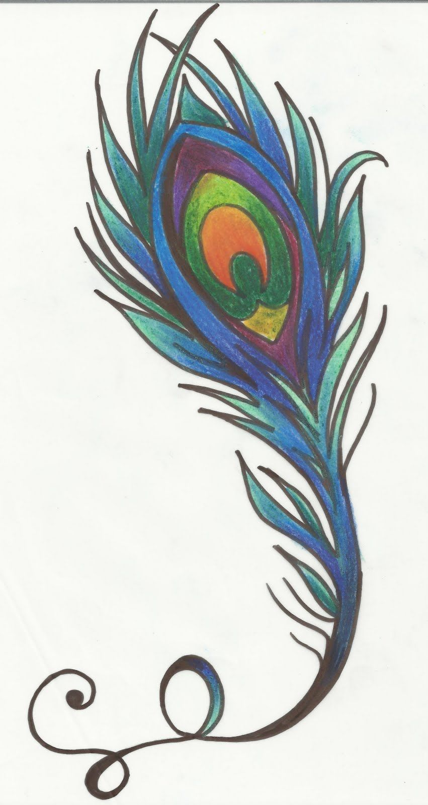 Peacock Feather Drawings Tattoo Peacock feathe | Tattoo ...