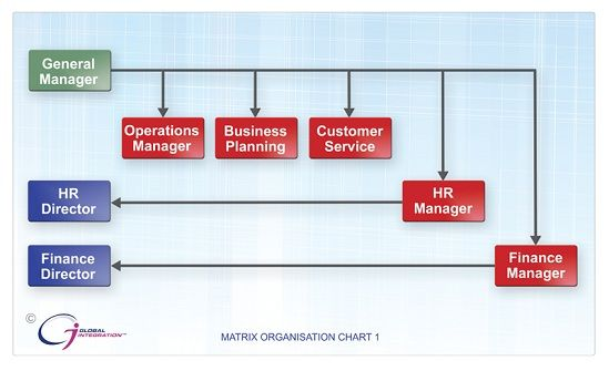 Matrix Reporting Structures Matrixed Organization Structures