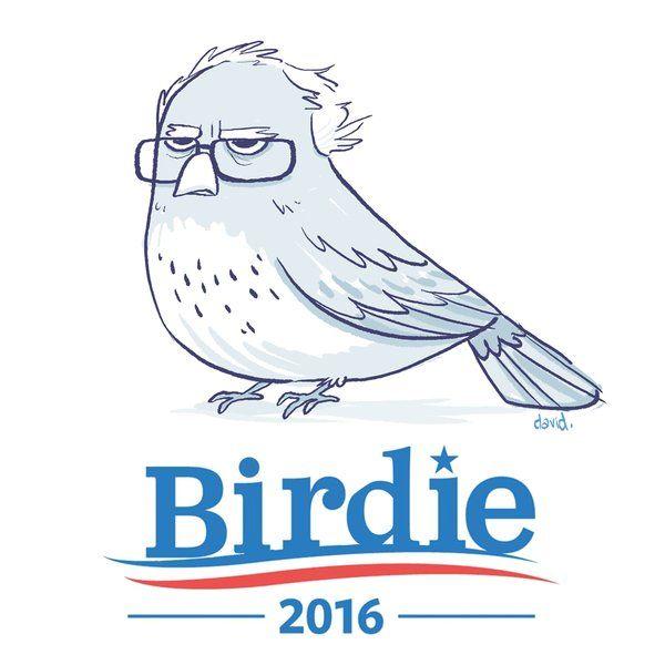 bernie sanders is a very wise bird still sanders pinterest