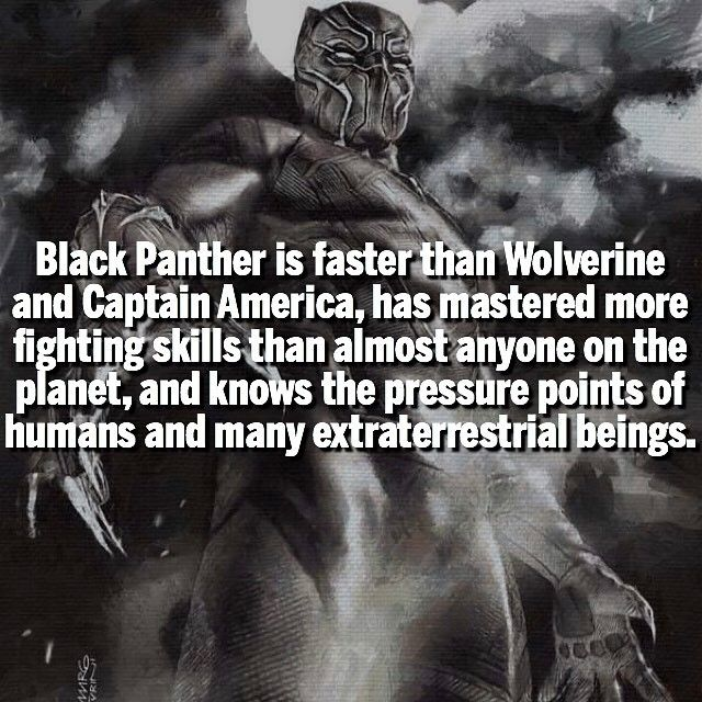 Some Bad*ss Black Panther facts for ya