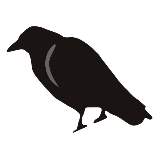 Spooky Crow Cartoon 1 Png Image Download As Svg Vector Eps Or Psd Get Spooky Crow Cartoon 1 Transparent Icon For Your Gra Crow Crow Silhouette Graphic Image