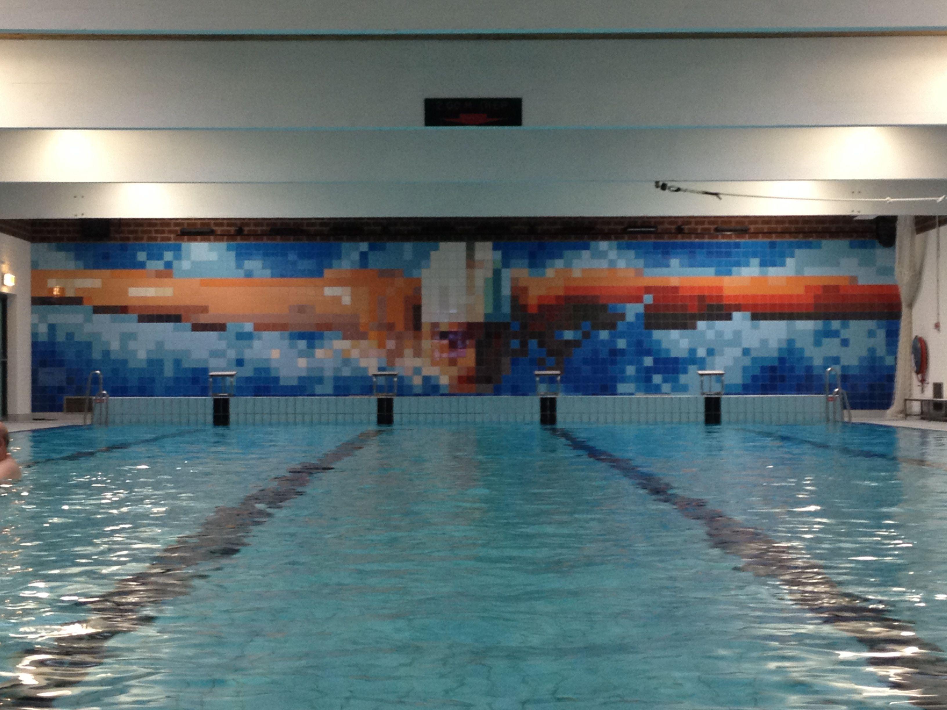 Terra Maestricht Tegels : Mosa tegels in zwembad meekenesch in lichtenvoorde mosa tiles tiles