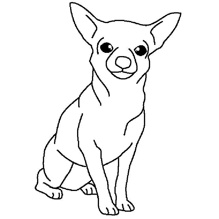 coloring pages chihuahua kleurplaten honden tekenen