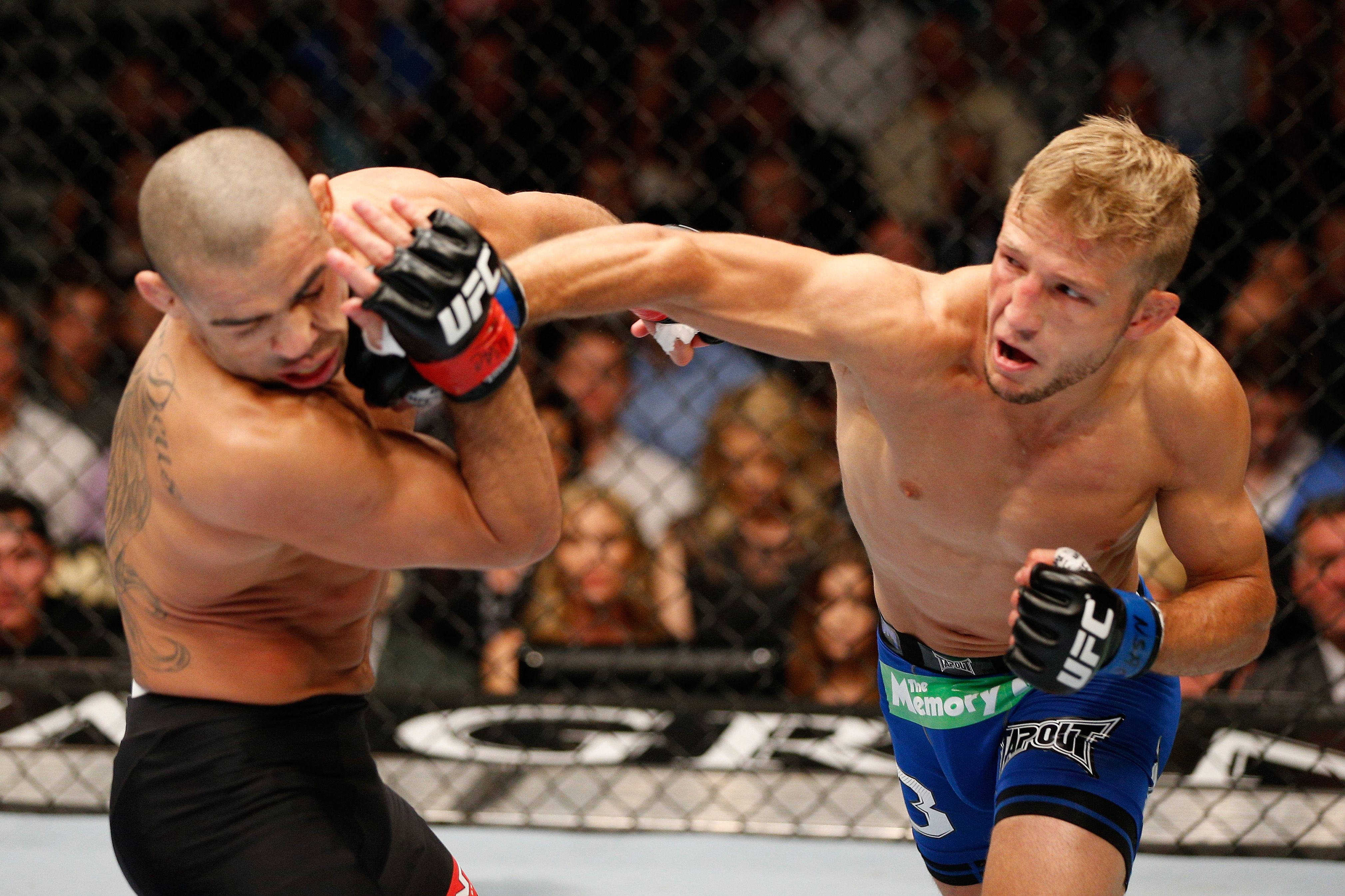 How T J Dillashaw Shocked Renan Barao And The Mma World Martial Arts Mixed Martial Arts Mma Fighting