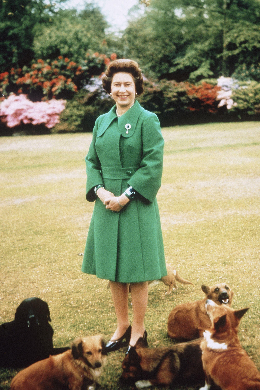 Image result for queen elizabeth 1980
