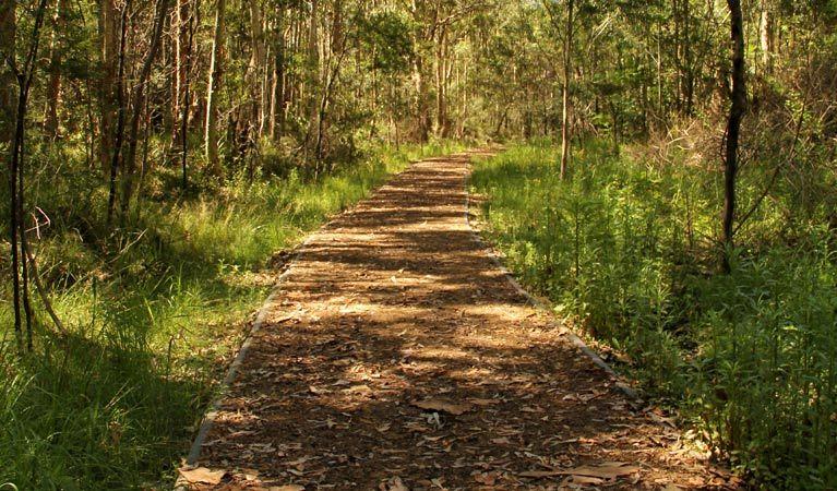 Blue gum hills park