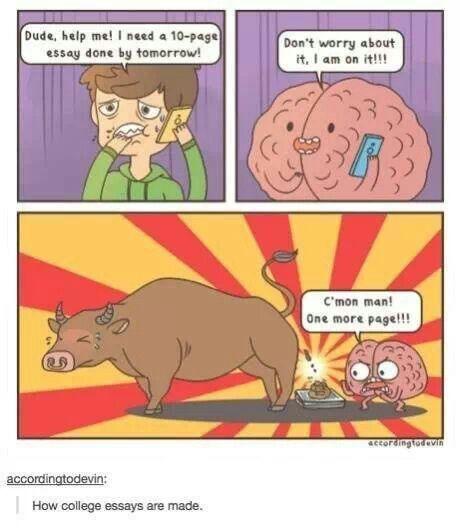 Last Minute College Essay Tumblr Funny Post Meme Sarcastic Sarcasm Argumentative Satirical Topic For High School