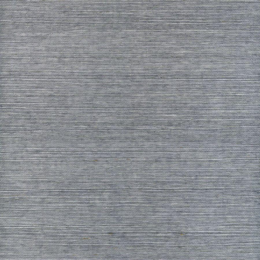 Shop allen + roth Blue Grasscloth Unpasted Textured