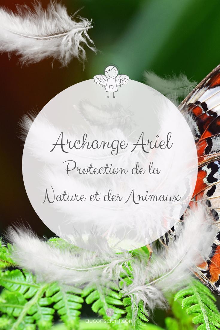 Archange Ariel Nature Et Animaux Esprit De La Nature Archange Anges Et Archanges