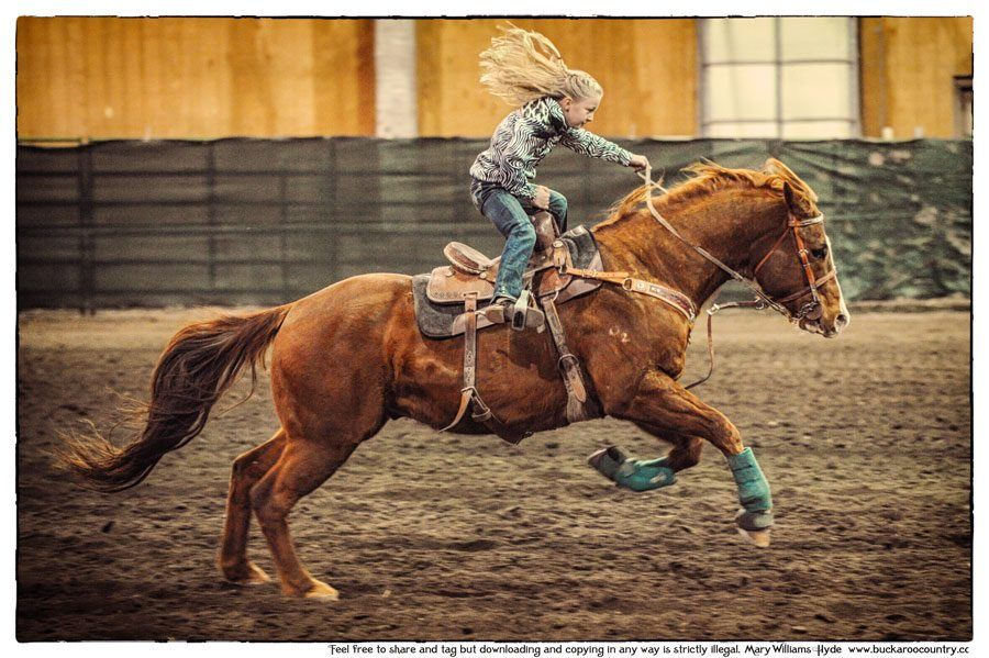 One Tough Little Cowgirl Barrel Racing Horses Horses