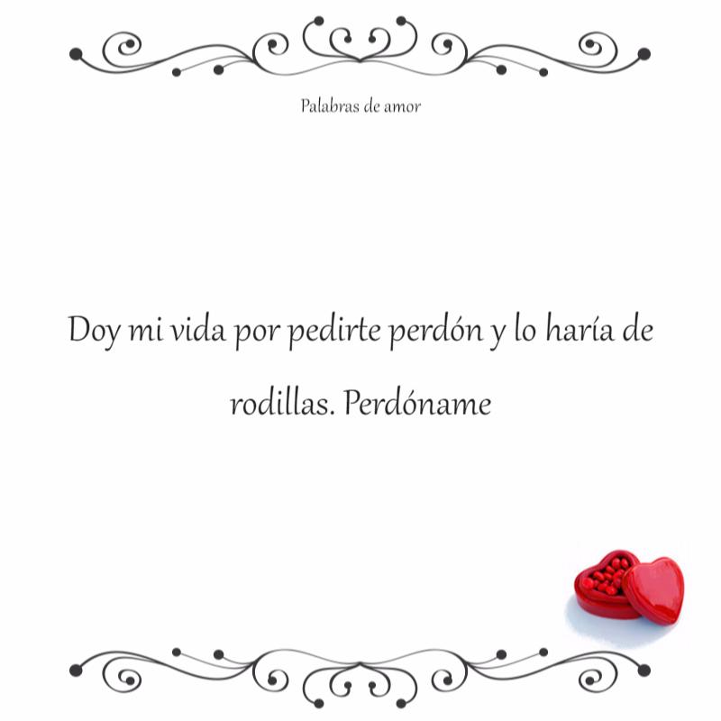 Doy Mi Vida Por Pedirte Perdon Y Lo Haria De Rodillas Palabras De Amor Frases De Amor Amor