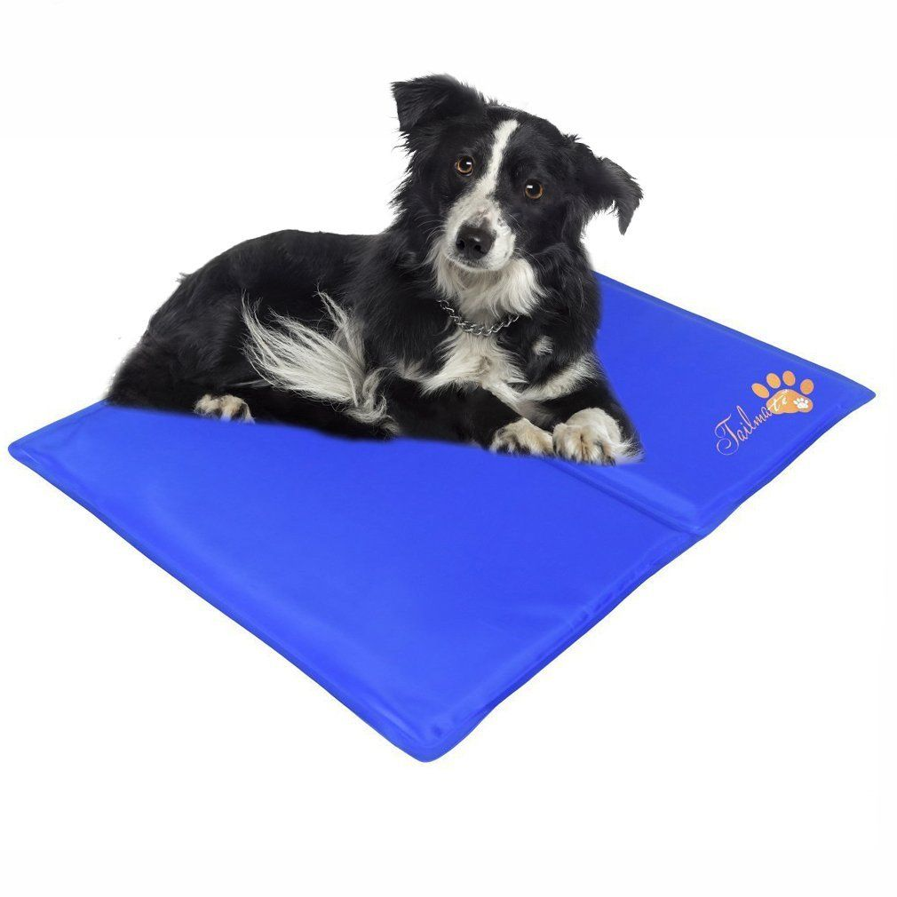 Pet Cooling Mat Pad Cover For Cats And Dogs With Non Toxic Material Click Image To Review More Details This Is Pet Cooling Mat Cat Fleas Dog Training Pads
