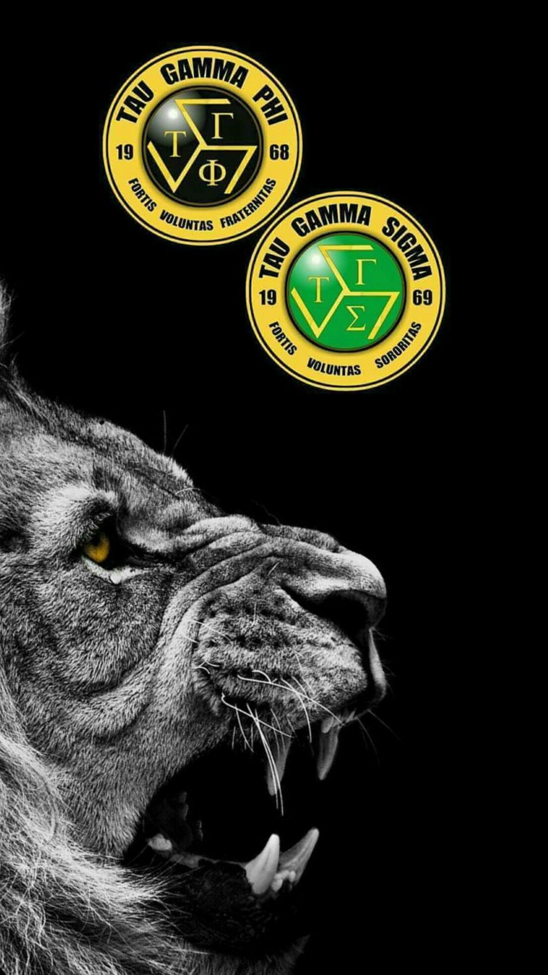 Taugamma Triskelion Black Wallpaper Androidwallpaper Iphonewallpaper Ios Android Tau Gamma Black Wallpaper Tree Wallpaper Iphone