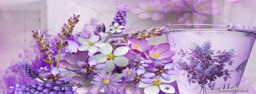 Lavender Spring ~ Facebook Cover
