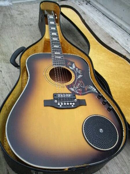 Elfolk Acoustic Guitar With Far Out Solo Amp Bridge Pickup Acoustic Guitar Cool Guitar Guitar