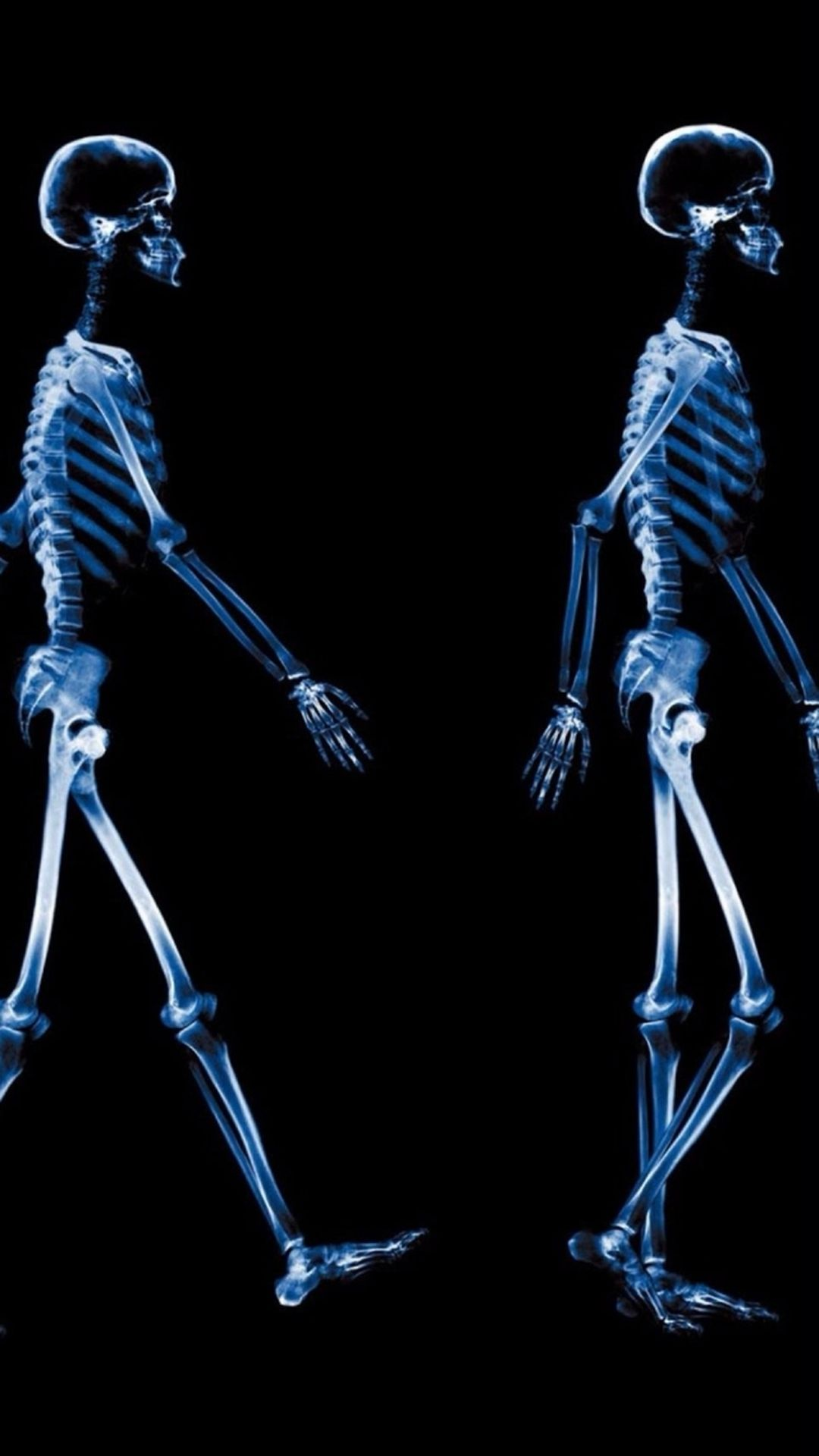 abstract xray walking human skeleton dark #iphone #6 #wallpaper, Skeleton
