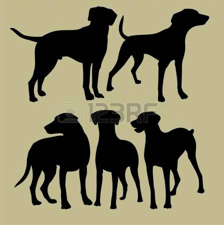 Dog Silhouette Running Silhouette Of The Dogs Illustration Dog Poster Dog Silhouette Dog Stock Images
