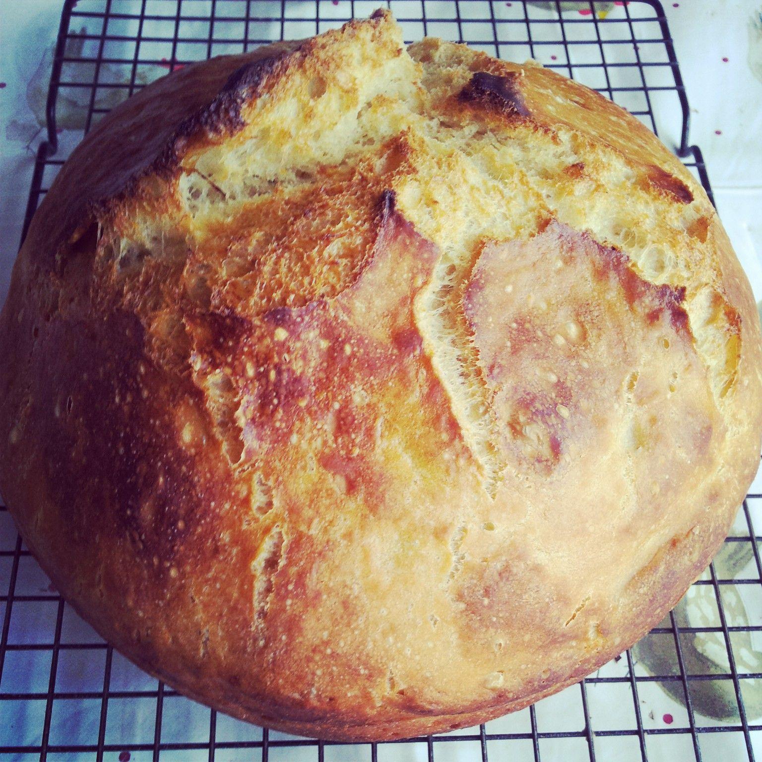 Nanna's No-Knead Saucepan Bread   Recipe   Bread, Vegan ...