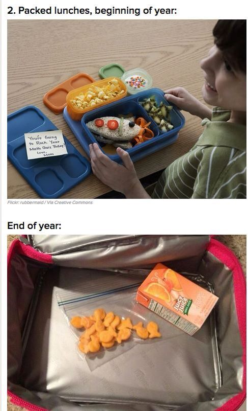 Pin By Misty Kelley On Funny Mommy Humor Dad Humor Pack Lunch