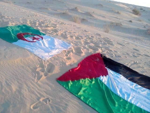 Aℓgyeyaiye Palesine Palestine Flag Exo Stickers Palestine