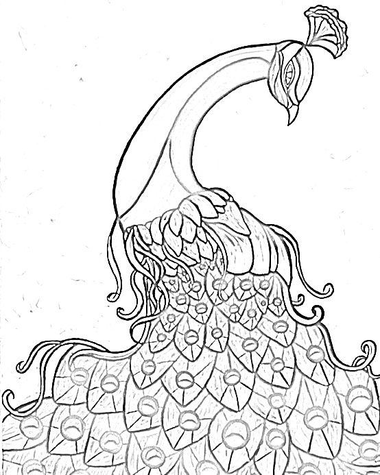 free printable peackoxk mosaic art coloring pages | z PEACOCK | Craft | Blank coloring pages, Painting ...