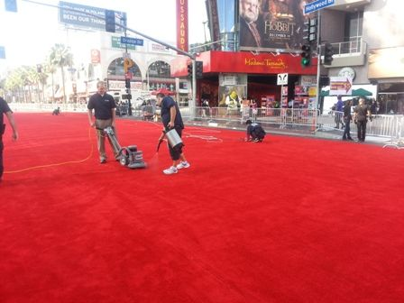 Carpet Cleaning Hollywood Parade The Head