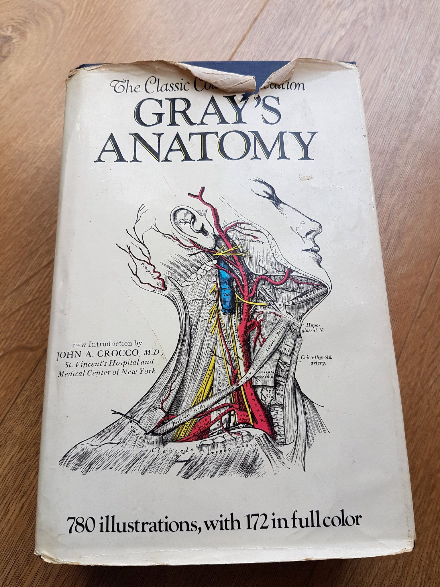 Gray 039 S Anatomy Coloring Book Awesome Sarah M Schwarz On Twitter The Things You Find In A Coloring Books Anatomy Coloring Book Christmas Coloring Books