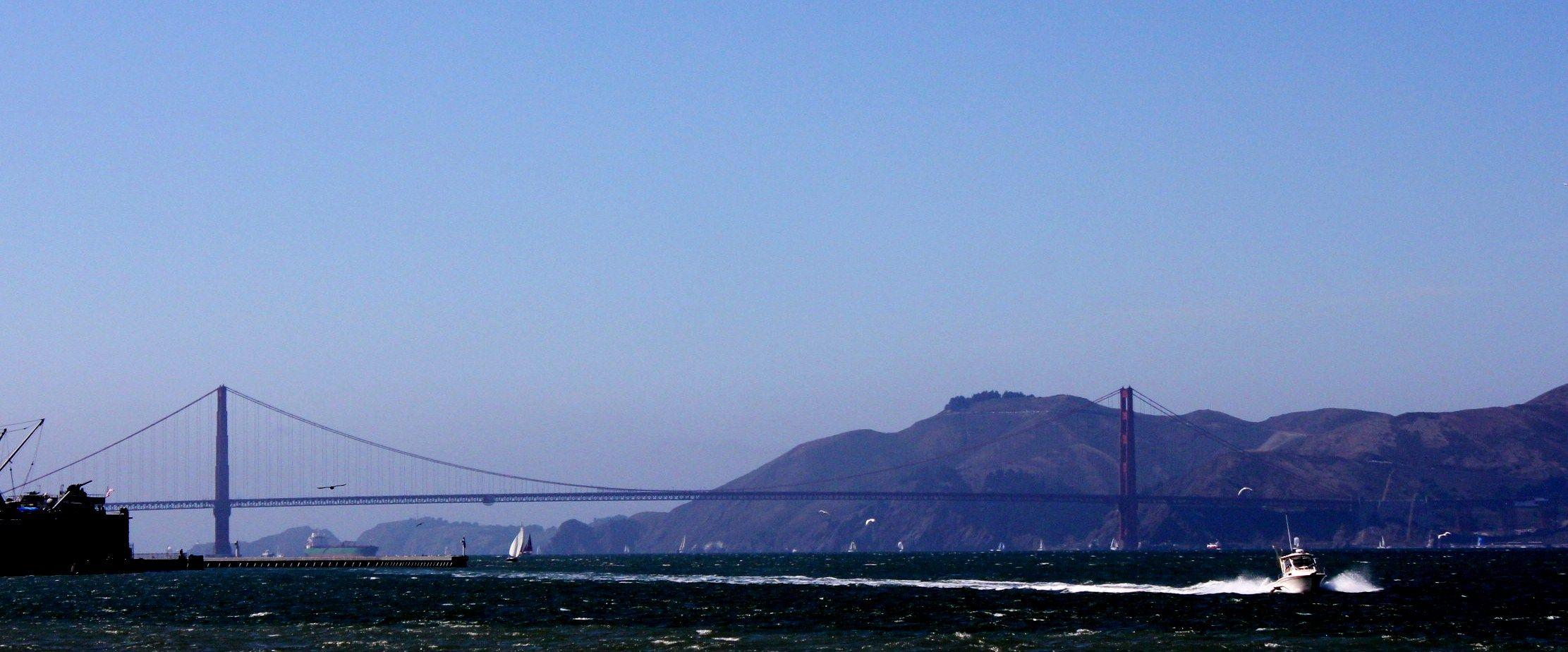 Golden Gate, just fascinating.
