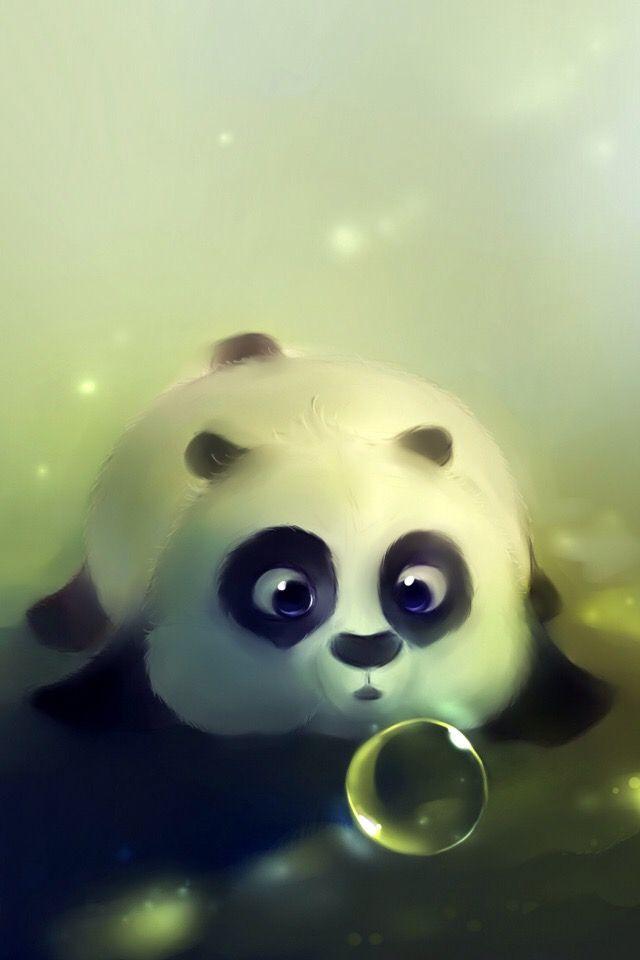 coole panda