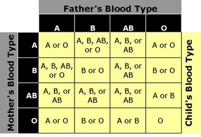 Blood Type Personality Compatibility - SHE SAID