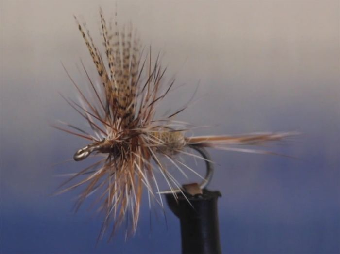 Video: How to Tie the Dorato Hare's Ear Dry Fly - Orvis News