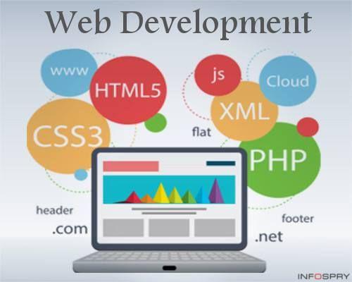 Noivotech Software Digital Marketing Company Based Startup Website Design Company Custom Website Design Web Design Services