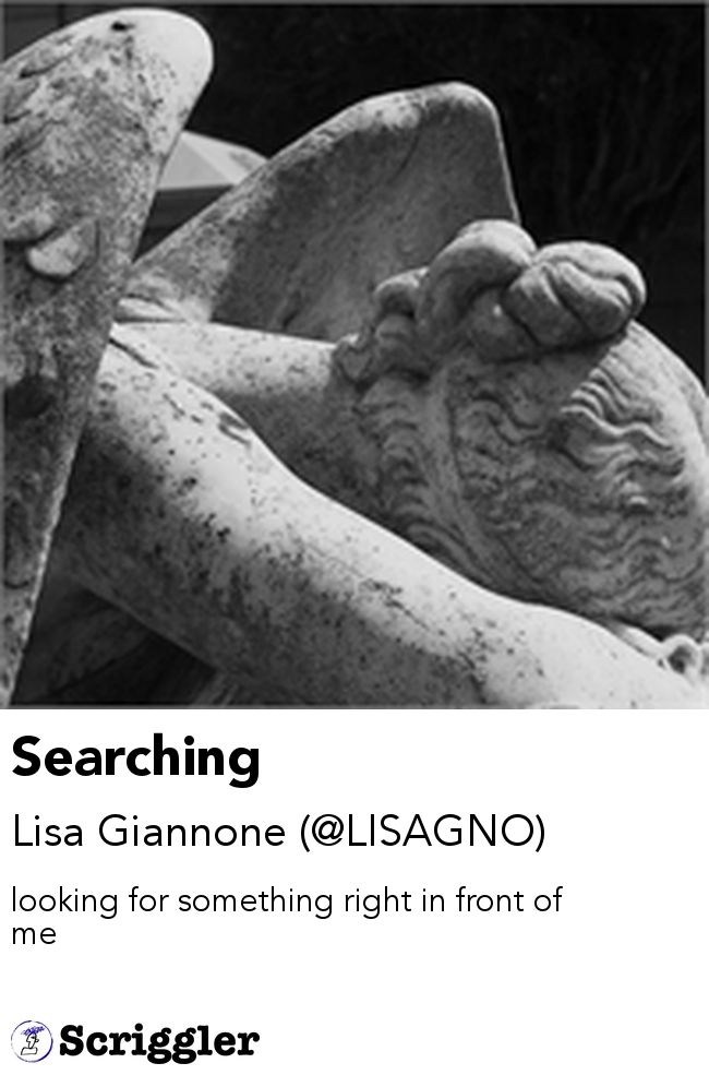 Searching by Lisa Giannone (@LISAGNO) https://scriggler.com/detailPost/story/52277 looking for something right in front of me