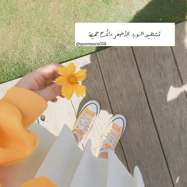 Girl تصميمي رمزيات بنات اقتباسات عربيه ورد اصفر Cute Photography Flower Aesthetic Yellow Aesthetic