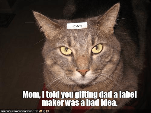 Mom In 2021 Funny Animal Pictures Funny Animals Cats
