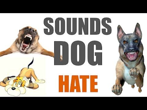 5 Sounds Dogs Hate All Time | HQ | Sound Effects | Dog