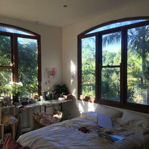 Photo of 13+ Grand Natural Home Decor Indoor Trees Ideas :  Astonishing Useful Ideas: Nat…