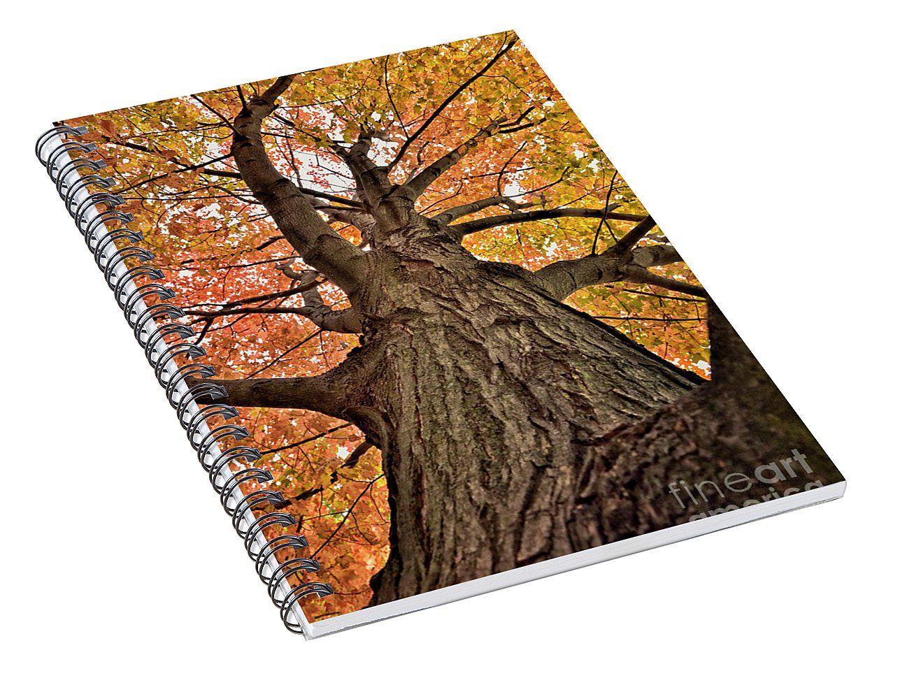 Autumn leaves spiral notebook for sale by norman gabitzsch houston photographer