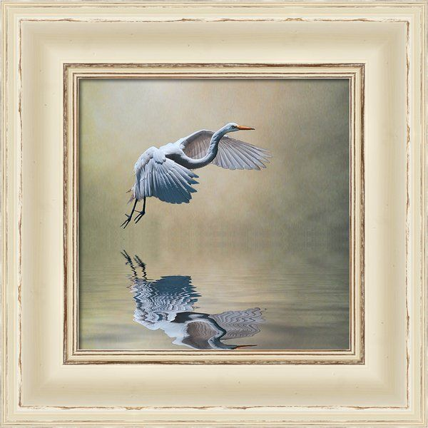 The Early Bird Framed Print By Brian Tarr | #Picture Framed on the ...