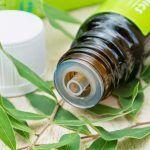 Essential oils essential oil basics cleaning naturally natural cleaning hacks Essential oils essential oil basics cleaning naturally natural cleaning hacks