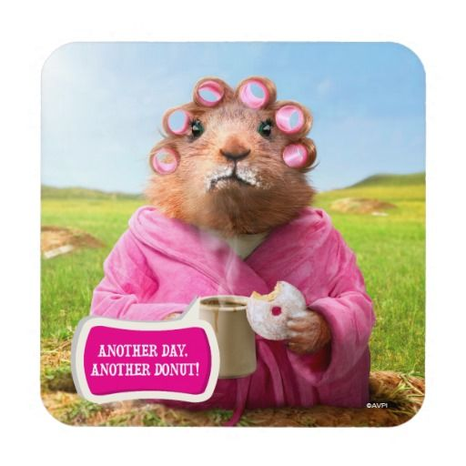 Avanti Press - Morning Groundhog with Breakfast Donut and Coffee. Regalo, gift. #posavaso #coaster