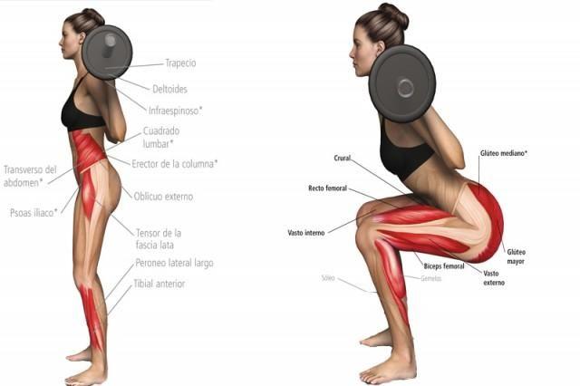 como aumentar los gluteos ejercicios