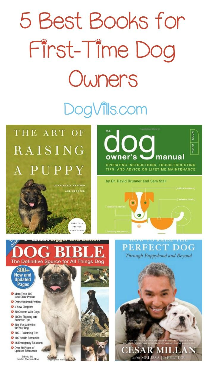 10 Best Books For First Time Dog Owners Dog Training Books Dog