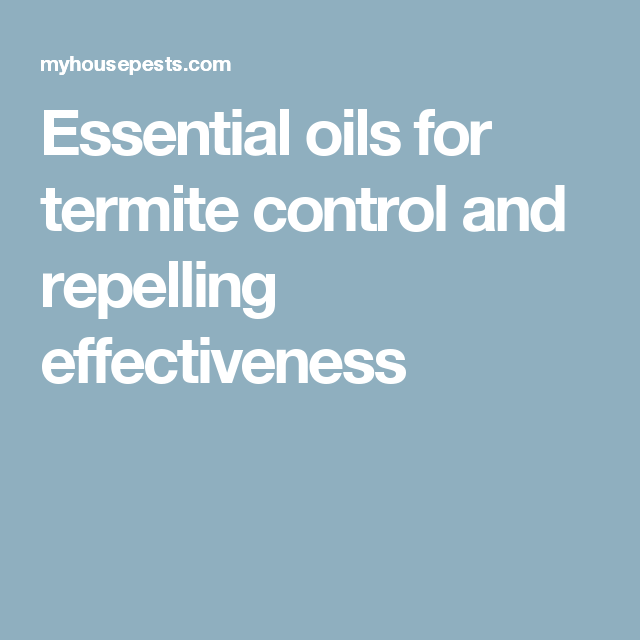 Essential Oils For Termite Control And Repelling Effectiveness Termite Control Essential Oils Termites