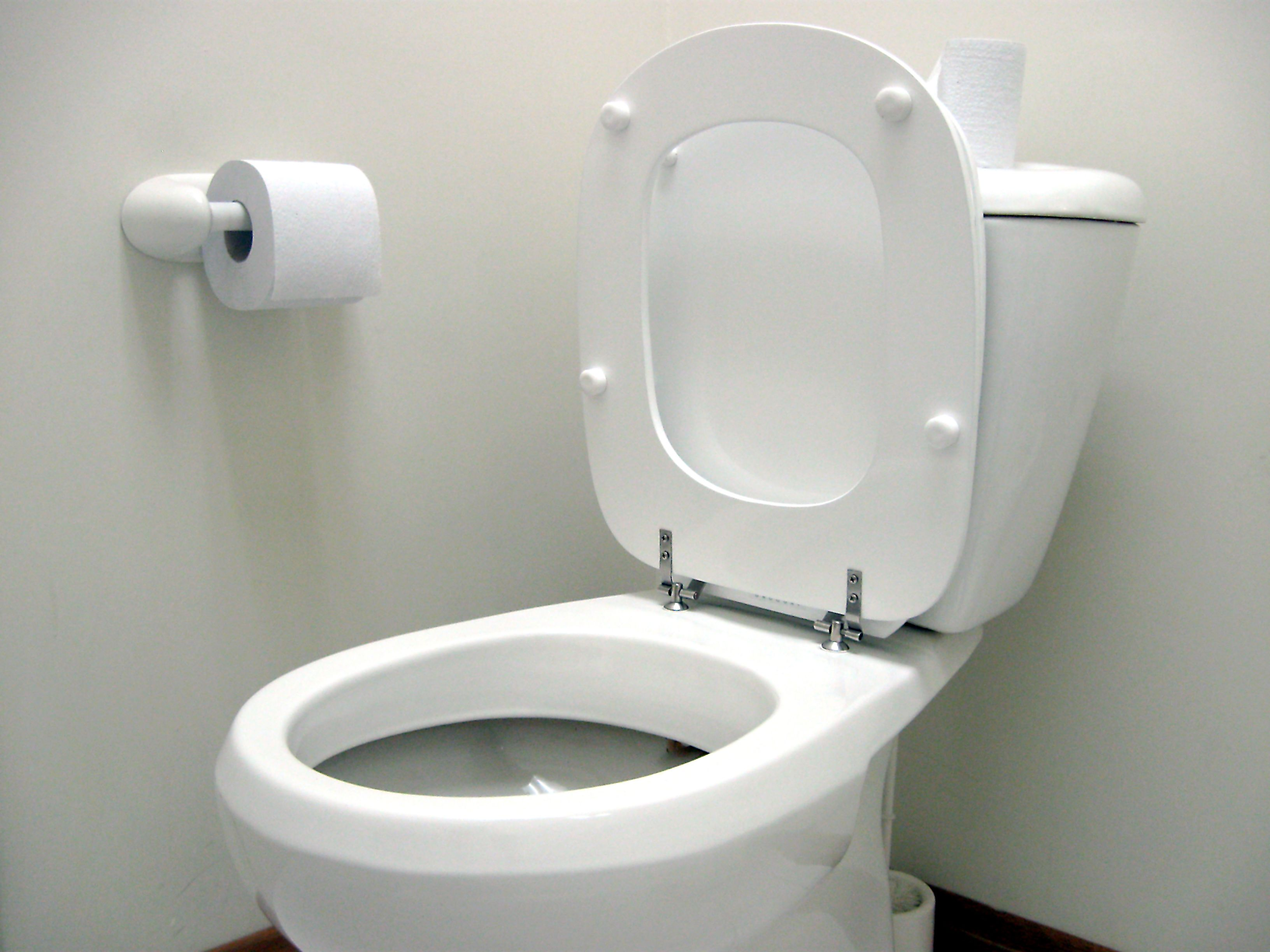 Okay world, here\u0027s the first and for sure the most popular toilet ...