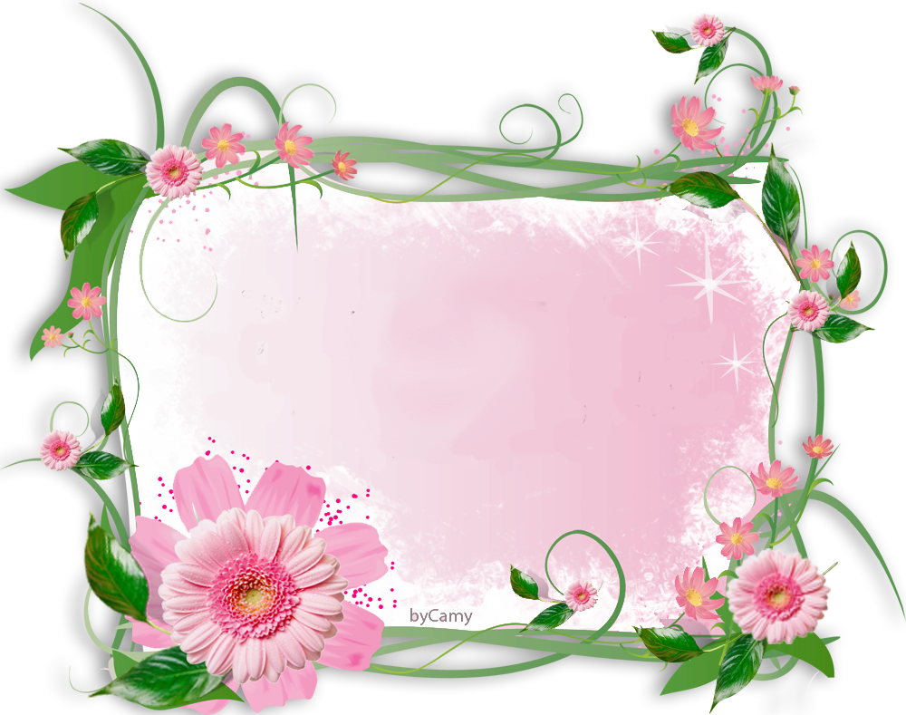 flower frame by kmygraphicdeviantartcom on deviantart