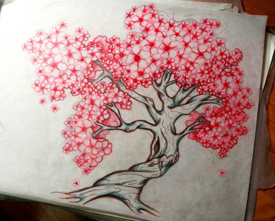 Cherry Blossom Tree Tattoo Sketch Blossom Tree Tattoo Cherry Blossom Tree Tattoo Cherry Tree Tattoos