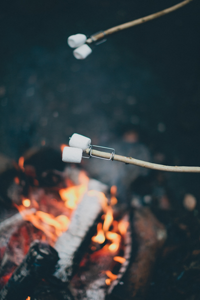 Toasting Marshmallows Over Camp Fire
