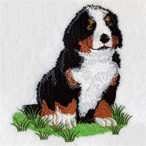 Bernese Mountain Dog Embroidery Design Dog Days Pinterest